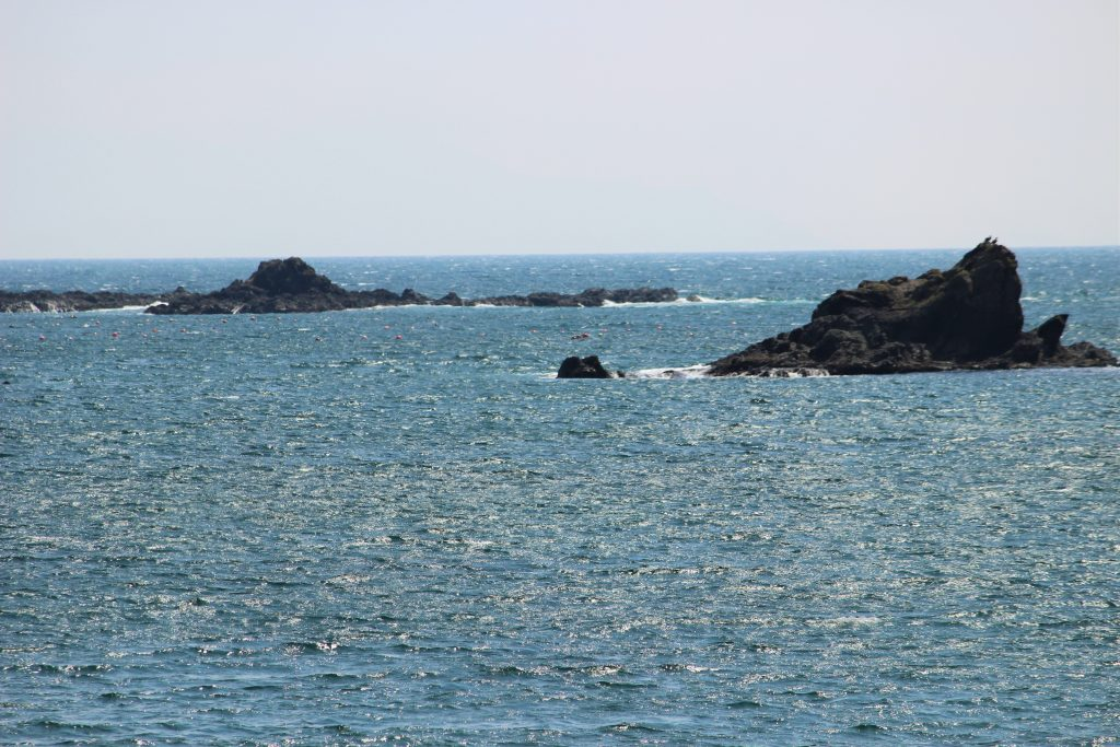 知内町の海
