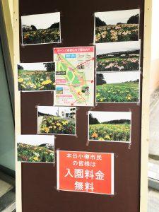 オーンズ春香山ゆり園3