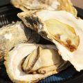 さっぽろオータムフェスト2016!特別会場で厚岸ブランド牡蠣「まるえもん」を実食!