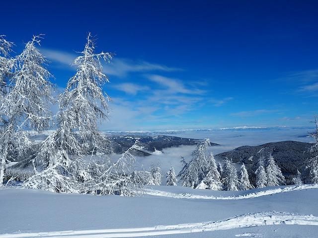 skiing-1231080_640